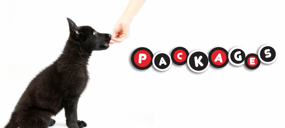 Dog & Puppy Training Packages  COLUMBUS, OHIO